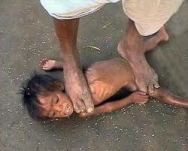 A Small Unwanted Girl Child Is Put To Death - Sorry, But This Meant To Shock You