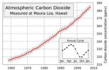Rise In Global CO2 Levels