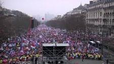 Anti-Gay Marriage Demonstration - Paris