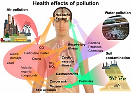 The Effects Of Air Pollution