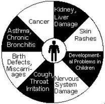 The Harmful Effects of Air Pollution