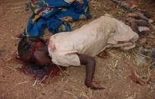 A Less Gruesome Atrocity By Boko Haram.