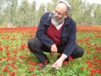 Mordechai Ben-Menachem