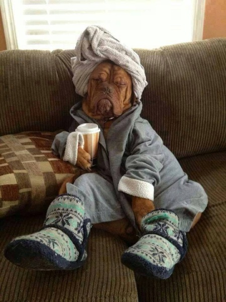 Take Care - Its The Flu Season