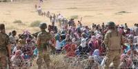 Escaping The Violence In Syria
