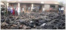 Victims Of The Baga Attack