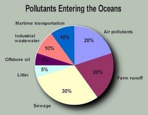 Ocean Pollutants