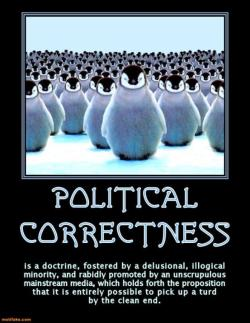 A Perfect Description Of Political Correctness