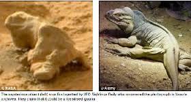 A Mars Lizard