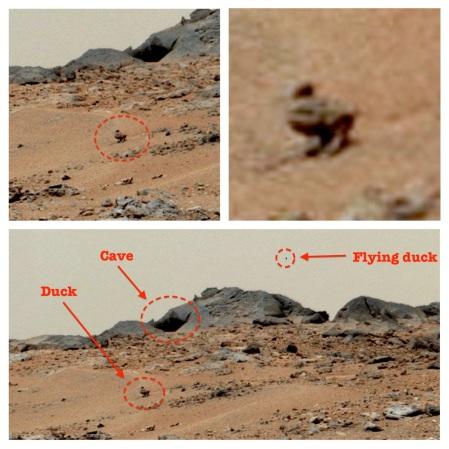 Ducks On Mars?