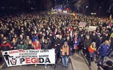 Pegida Movement