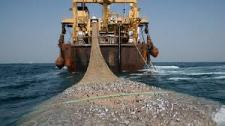 Modern Trawler